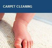 All Carpets Cleaning and Repairs experts will clean the domain, to avoid threat of further spoiling as a result of remaining suddenness. Wrong water clean-up, without fitting sterilization, can incite mold infestations and well being dangers. Floor blanket cleaning division has created to be one of Australia's best known and respected mat cleaning associations.