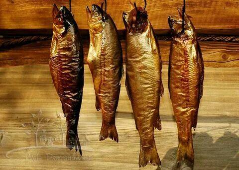 #pstrag #ryba #wedzenie #bieszczady #obiad #niclegi #stylowezagrody