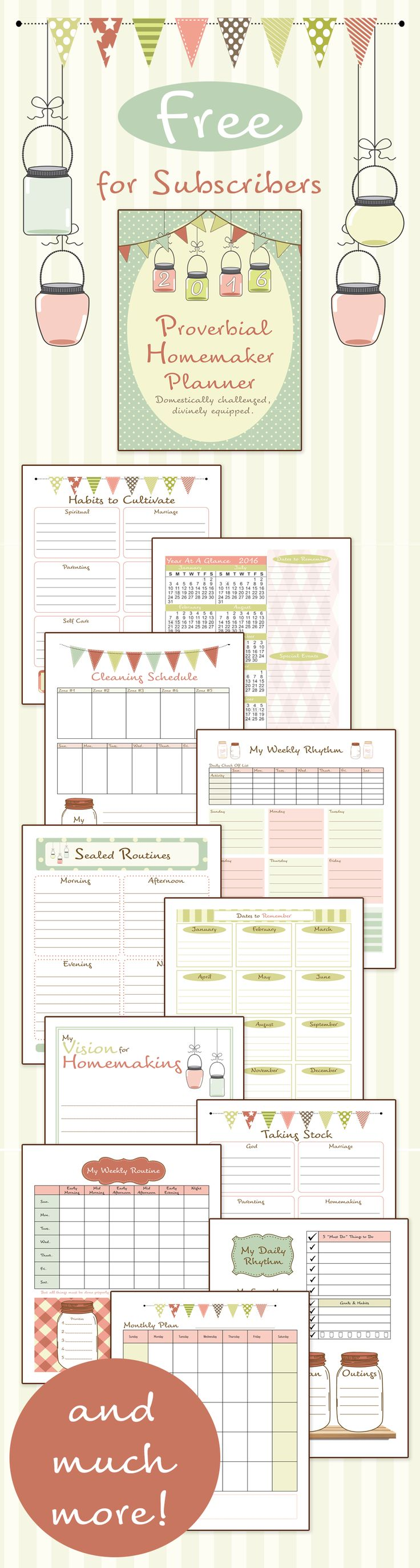 "I love this planner! I love that it's designed for the ""domestically challenged."" There's an e-course that goes with it too!"
