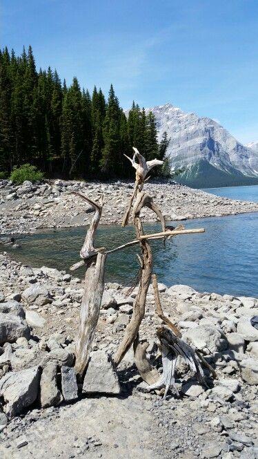 Driftwood creation