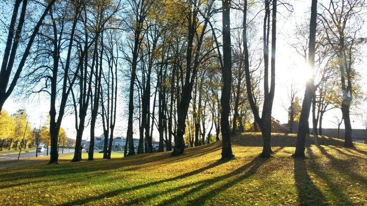 Teie hovedgård, Tønsberg