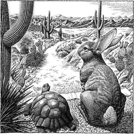 Ένα ανοιξιάτικο πρωινό ένας λαγός είχε βγει έξω από την φωλιά του και έτρωγε φρέσκο χορταράκι. Καθώς έτρωγε, είδε μια χελώνα να περνάει λίγο πιο μακριά και του φάνηκε τόσο αστείο το περπάτημα της...