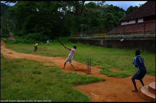 cricket played in a village