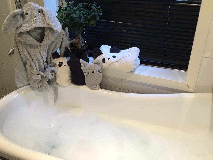 Time for a bath🐼🐇😻