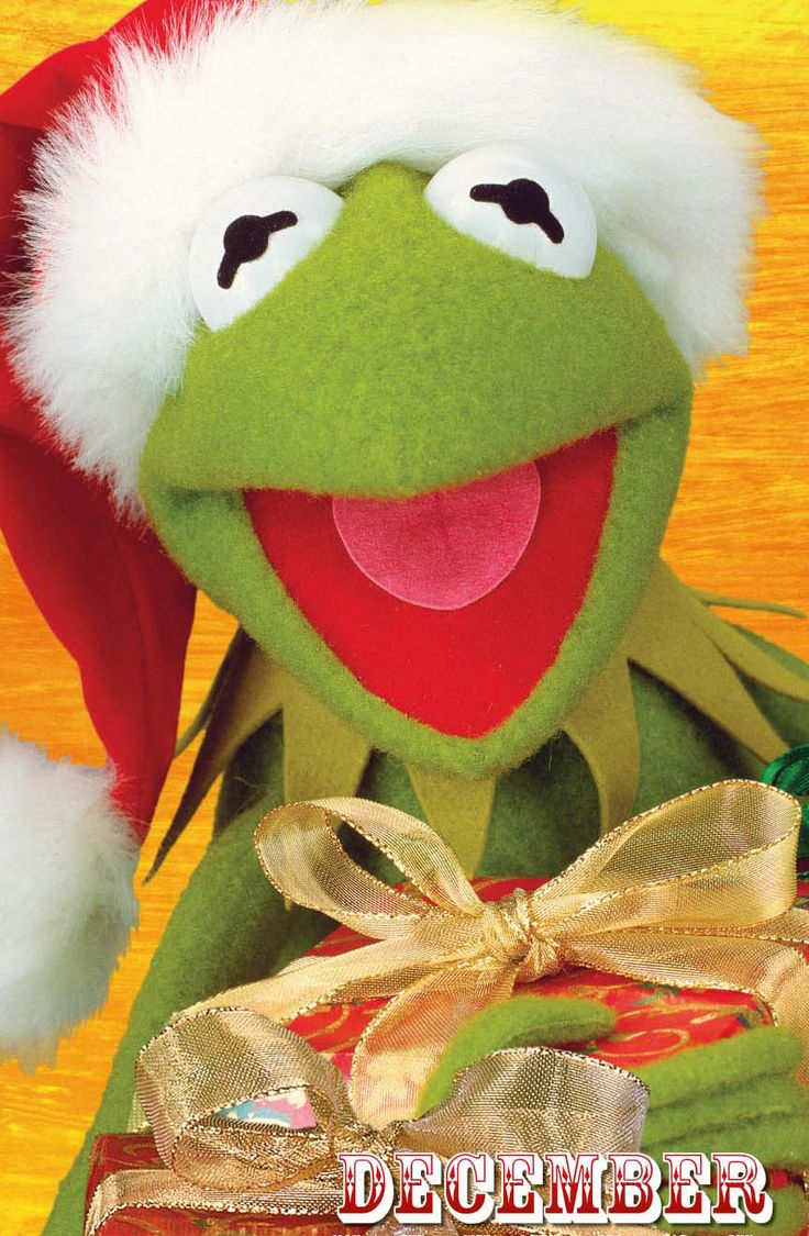 Its Kermit the Frog looking festive
