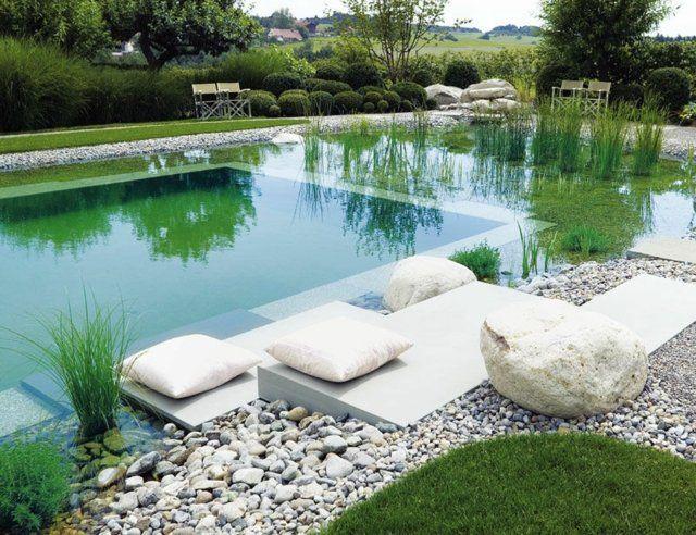 aménagement de jardin avec piscine naturelle décorée de galets et plantes aquatiques
