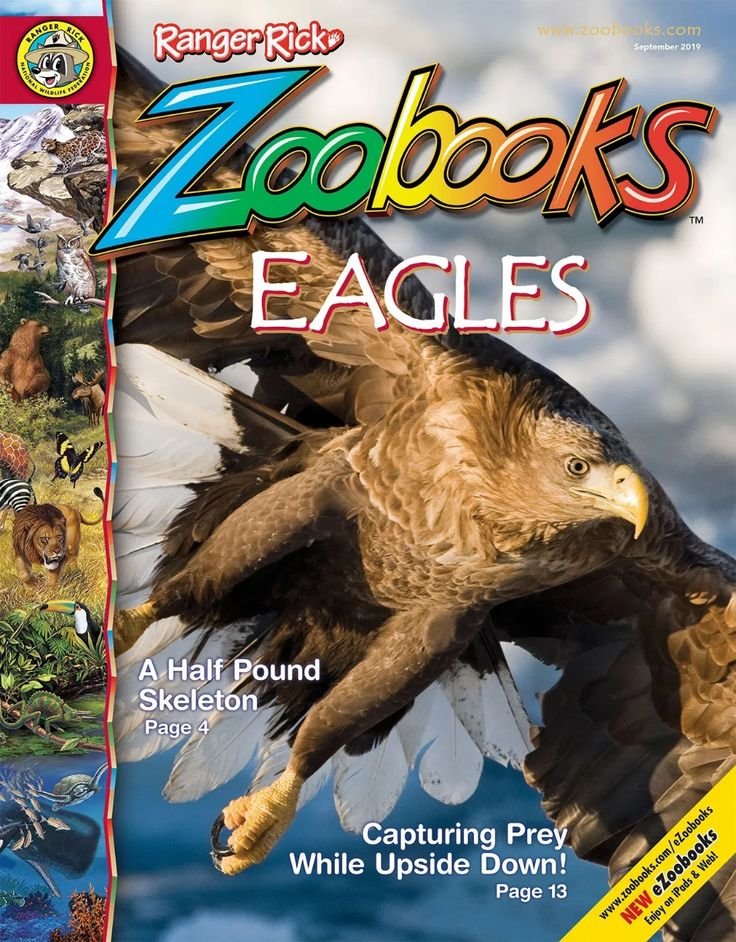 Magazines Ranger Rick Zoobooks in 2020 Magazines for