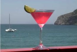 Tipo de Trago :  Batido , Copa Cocktail   IngredientesBacardi Cocktail:  60 ml Ron Bacardi  Blanco  15 ml Jugo de Limón  5 ml Granadina   ...