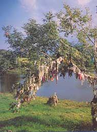 Irish Landmarks:The Holy Wells of Ireland - World Cultures European