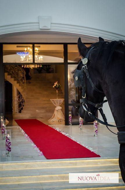 Accesoriile romantice covorul roșu arcadele florale decorurile vintage shabby chic obiecte handmade realizate cu mult drag și imaginație toate acestea îți vor transforma evenimentul într-o poveste de neuitat cu NuovaIdea. Îți punem la dispoziție decorurile speciale care vor scoate evenimentul tău din anonimat indiferent dacă este vorba despre o nuntă un botez un eveniment corporate o expoziție sau o aniversare alături de persoanele dragi.
