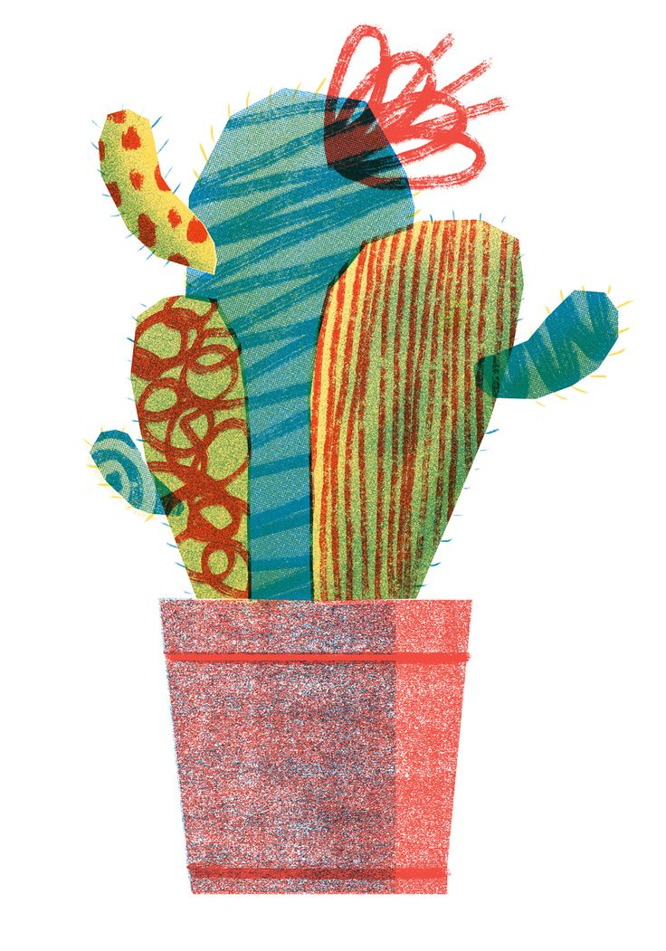Las 25 mejores ideas sobre cactus dibujo en pinterest - Informacion sobre los cactus ...