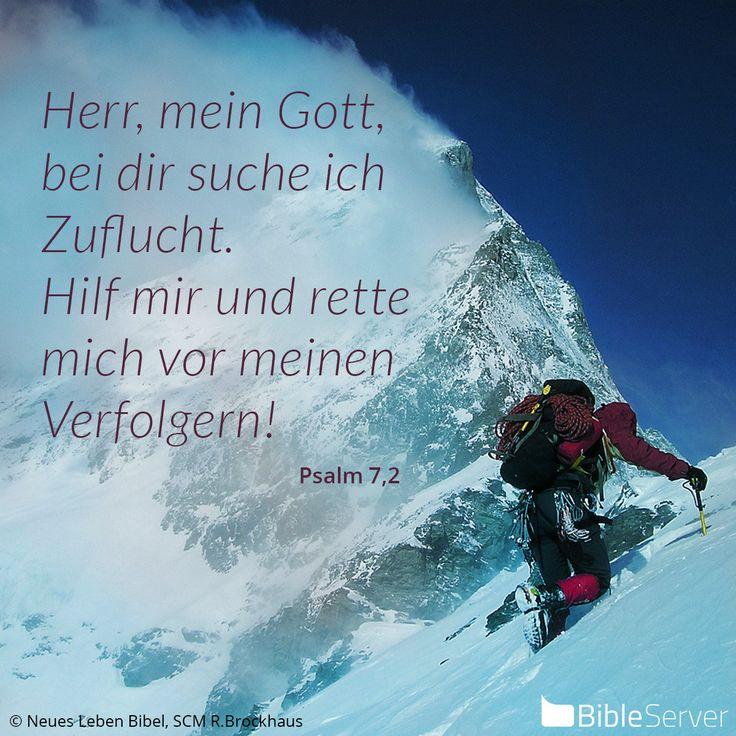 Nachzulesen auf BibleServer | Psalm 7,2