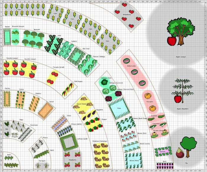 Fruit And Vegetable Garden Ideas Part - 49: Garden Plan - 2016: Veg 1