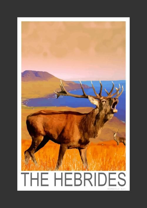 Red Deer stags in the Hebrides (Art Print)