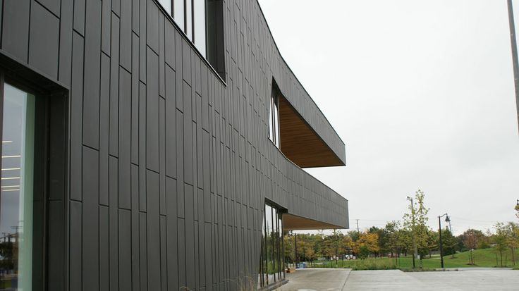 Black Metal Cladding  (Inspiration VIII. http://www.ritzarchitectural.com/projects.htm)