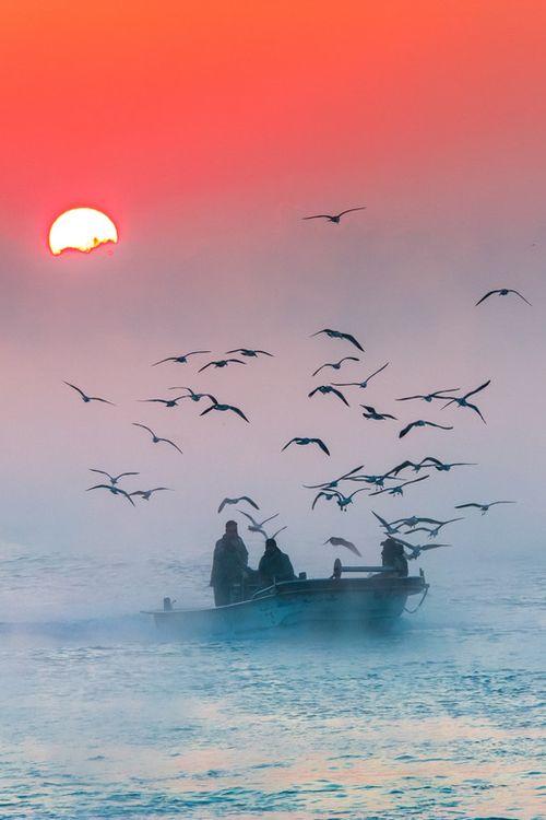 sonnenaufgang am bosporus, istanbul  © Motaz Al Tawil