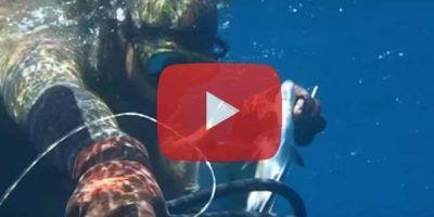 Youtube : Top 10 des vidéos chasse sous-marine les plus vues en 2016 sur le réseau social de partage de vidéos numéro 1