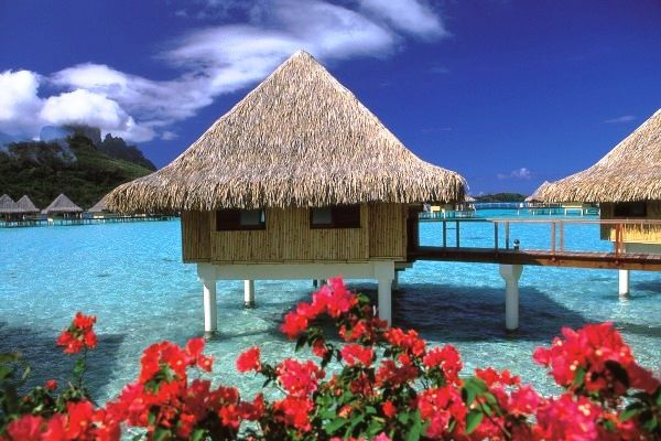 French Polynia Tahiti are a lavish and beautiful place i'd love to visit!!!