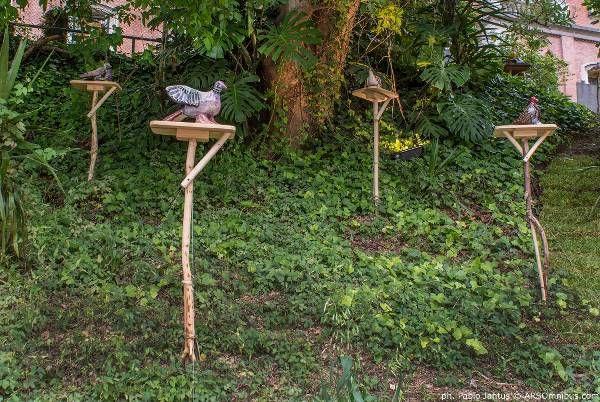 Casa FOA 2014: #Paisajismo - Palomas Blancas en el Jardín Oscuro - Desiree De Ridder #arquitectura
