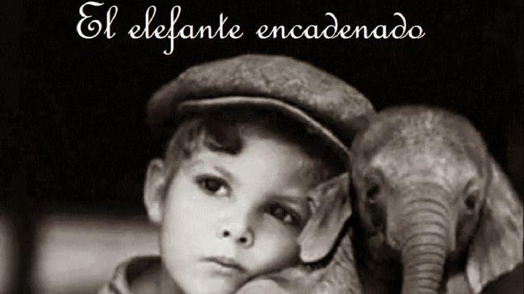 Capacity: Palabras con voz...: Excelente Corto Educativo: El elefante encadenado, un cuento de Jorge Bucay