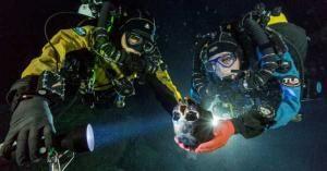 Potápěči našli na dně moře biblickou armádu. Potvrzuje se Exodus a Starý zákon?