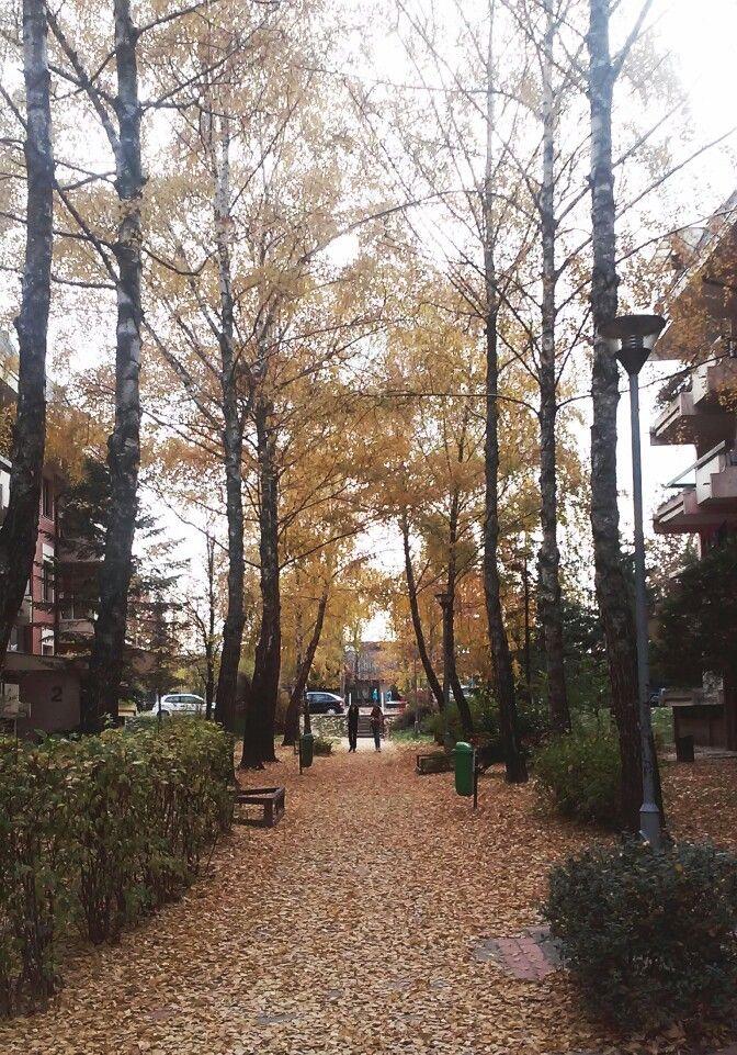 Walk | Biljana Vranješ