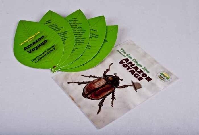 sd-zoo-die-cut-brochure-and-flyer
