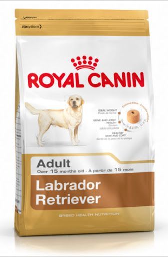 www.petusuals.com.au The Labrador Retriever is known for his tendency to gain weight. This formula helps maintain the Labrador Retriever?s ideal weight thanks to an adapted ... Royal Canin - Breed Health Nutrition - Labrador Retriever 30 Adult - dog food for adult Labrador Retrievers over 15 months. Tailor made nutrition for pure breed dogs. ... Labrador Retriever Adult ... Complete feed for adult and mature Labradors - Over 15 months old