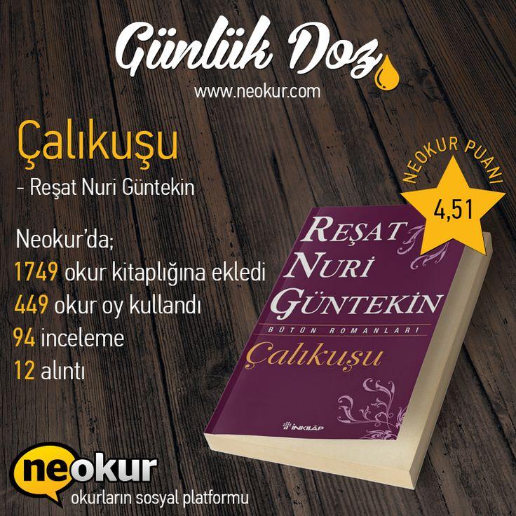 http://www.neokur.com/kitap/62919/calikusu
