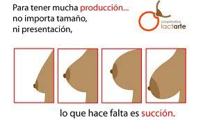 Mitos sobre la lactancia, 1. http://consejosmaminovata.blogspot.com.es/2014/11/mitos-sobre-la-lactancia-no-tengo.html