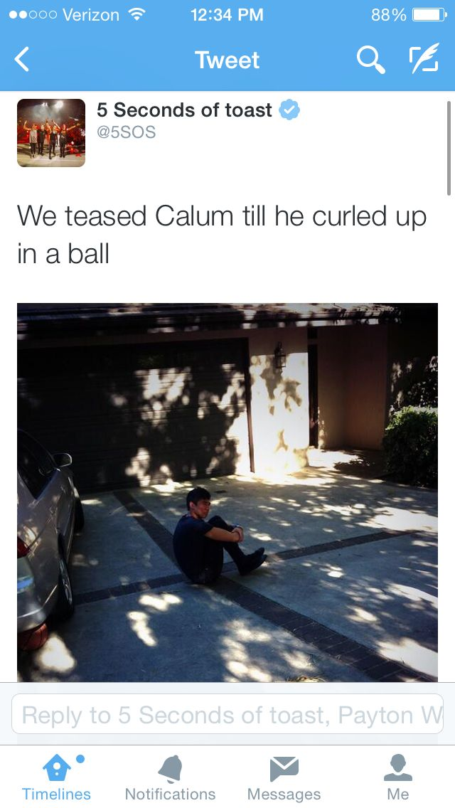 Everybody is mean to puppy cal. ITS OKAY CAL! DO YOU NEED A CUDDLE CUZ I VOLUNTEER