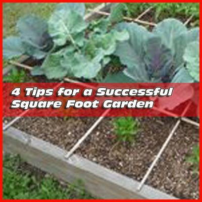 4 Tips on Square Foot Gardening