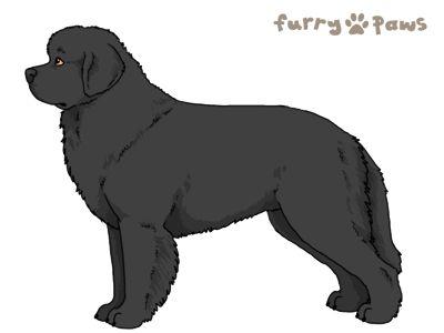 Furry Paws // WCT Kip's Osaka [2STM 22HH 1.368] *BoB*'s Kennel