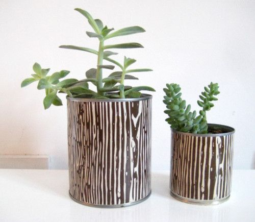 Easy DIY: Tin Can Planters