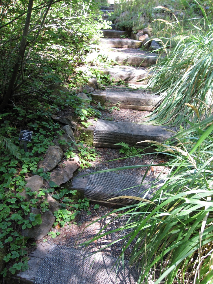Best 6X6 Timber And Gravel Steps Very Rustic Garden Bridge 640 x 480