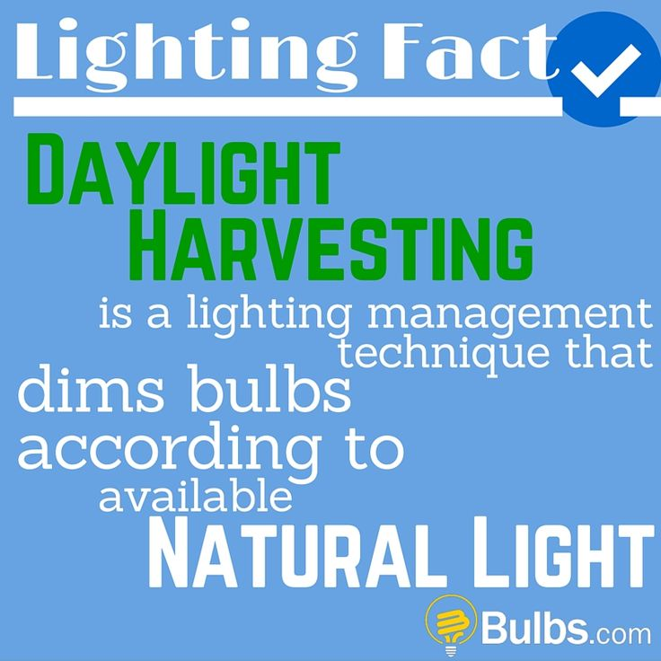 Lighting Fact: Daylight Harvesting is a lighting management technique that dims bulbs according to available natural light.