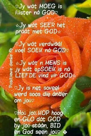 Jý wat moeg is...wat seer het ...wat verdwaal voel... praat met God... #Afrikaans #Heartaches&Hardships