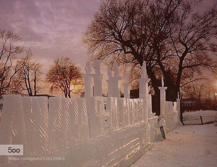 Sculture di ghiaccio - Pinned by Mak Khalaf 1995-Ottawa-Canada....Sculture di ghiaccio... City and Architecture 1995canadacloudsiceottawasnowtree by elvirazoboli66