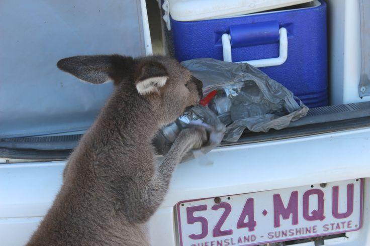 Esperance - Western Australia