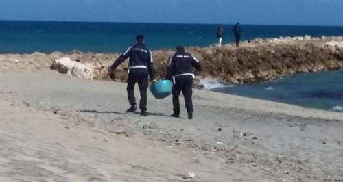 Puglia: #Sequestro di #ricci a San Cataldo. Multe anche per proprietari di cani (link: http://ift.tt/2mH1IKt )