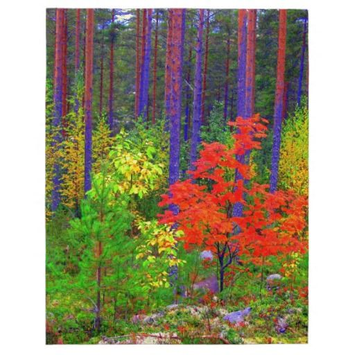 Fall colors jigsaw puzzles