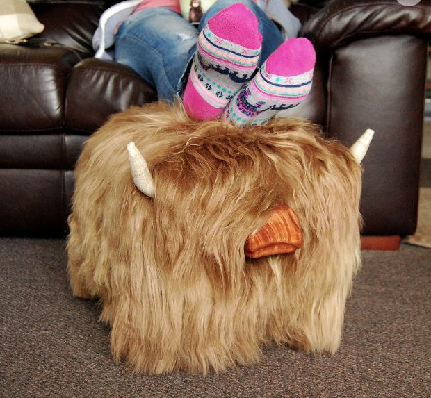 30487111dda Highland Cow Footstool. LOVE!