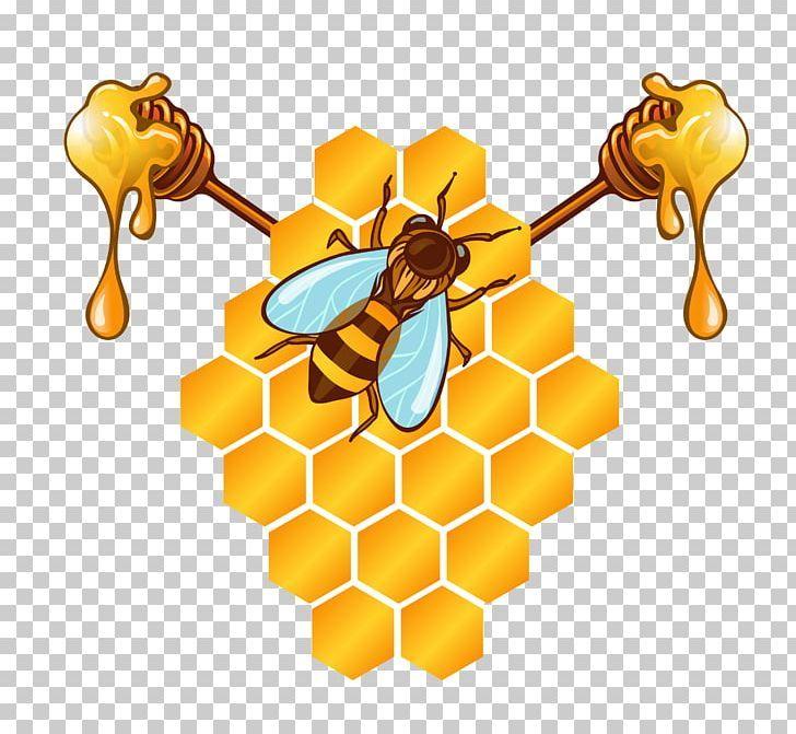 Honey Bee Honeycomb Png Bee Bees Bee Vector Cartoon Download Honey Art Bee Honeycomb Honey Bee