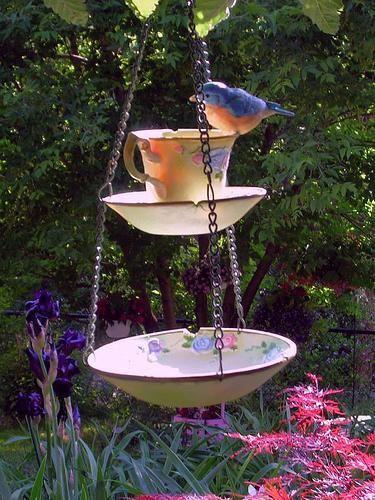 28. A chipped teacup makes a really cute bird feeder.