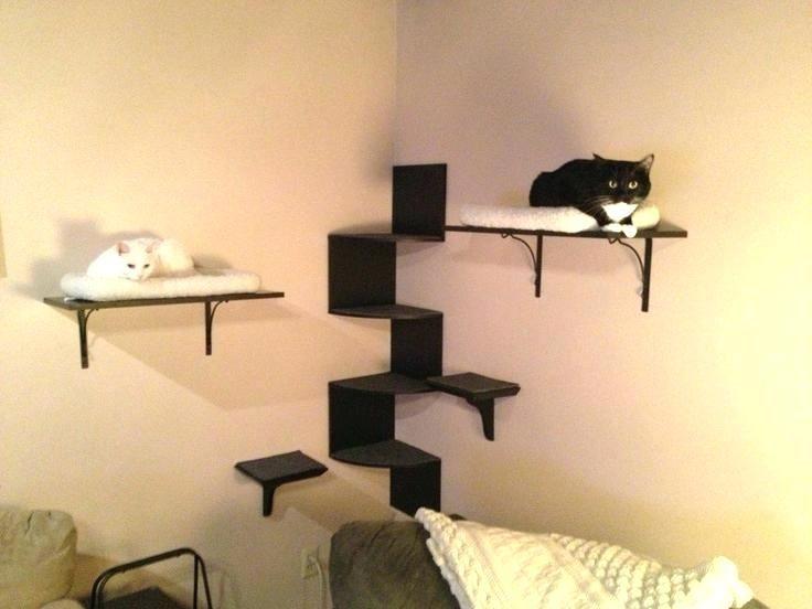Cat Shelves Ikea Cat Shelves Best Walls Images On Of Shelf Lack