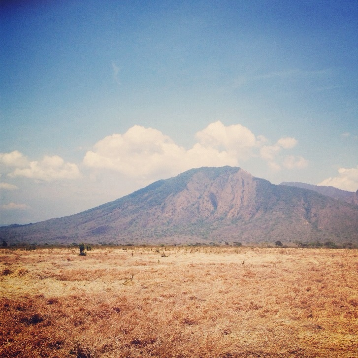 the view from baluran