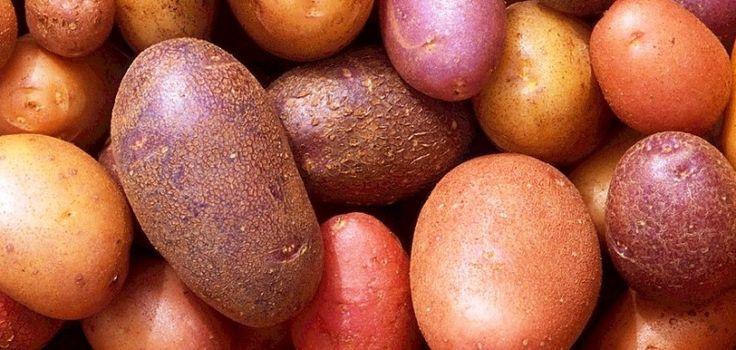 Cómo cocinar patatas… desde cero