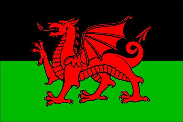 Welsh Educational Equipment Office & School Supplies Flag Banner 21*14cm No flagpole Z5033