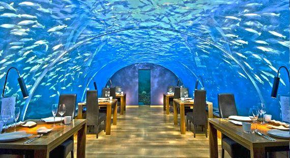 O restaurante mais bonito do mundo #restaurante #food #gastronomia #luxo #luxury #maldivas