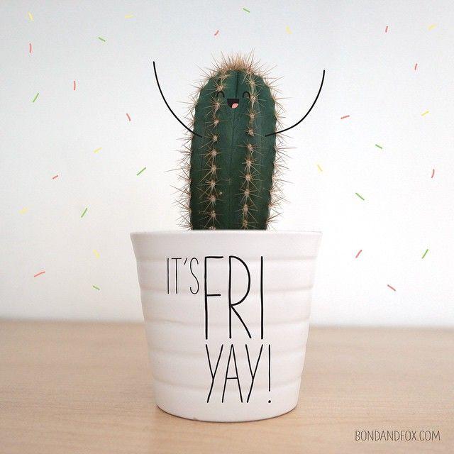 Looks like it's crazy cactus Friday at Bond and Fox...Friyay! :) www.bondandfox.com